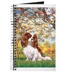 Spring & Cavalier Journal