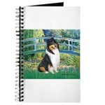 Bridge / Collie (tri) Journal