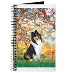 Spring / Collie Journal