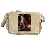 Accolade / Dobie Messenger Bag