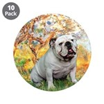 Spring/ English Bulldog (#9) 3.5