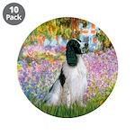 Monet's garden & Springer 3.5