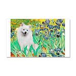 Irises / Eskimo Spitz #1 Car Magnet 20 x 12