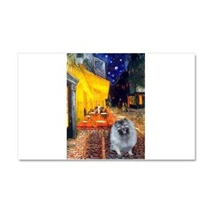 Cafe / Keeshond (F) Car Magnet 20 x 12