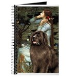 Ophelia / Newfoundland Journal