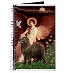 Angel & Newfoundland (B2S) Journal