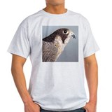 Peregrine Falcon Ash Grey T-Shirt