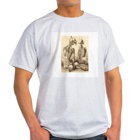 Medical Skeletons and Cadavers Light T-Shirt
