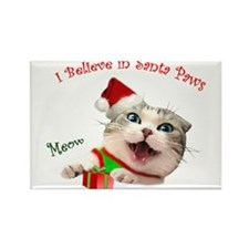 I Believe in Santa Paws Rectangle Magnet