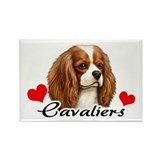 Love Cavaliers Rectangle Magnet