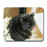 Black Hamster Mousepad