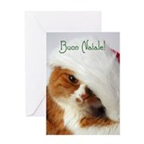 Cat Wearing Santa Hat Italian Greeting Card