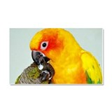 Bird Photo Car Magnet 20 x 12