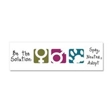 Be the Solution Car Magnet 10 x 3