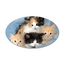 Shelter Kittens 22x14 Oval Wall Peel