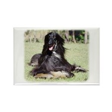 Afghan Hound AA017D-115 Rectangle Magnet
