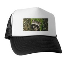 Baby Raccoon Trucker Hat
