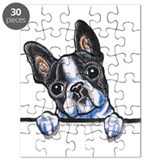 Curious Boston Puzzle