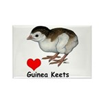 Love Guinea Keets Rectangle Magnet (10 pack)
