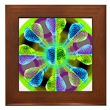Brainy Kaleidoscope Framed Tile