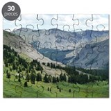 Cottonwood Pass Puzzle