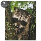 Raccoon lovers Puzzles