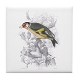 Goldfinch Bird Tile Coaster