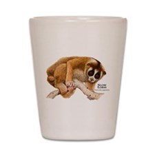 Slow Loris Shot Glass