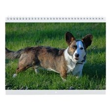 Cardigan Welsh Corgi Wall Calendar