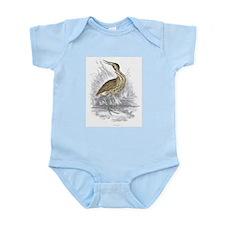 Bittern Bird Infant Creeper