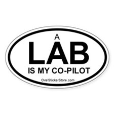 Lab Co-Pilot Oval Decal