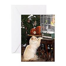 Cat and bird Greeting Card