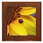 Ladybugs on Flowers Framed Tile