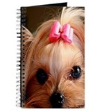 YORKSHIRE TERRIER CUTIE Journal