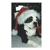BOSTON TERRIER SANTA Postcards (Package of 8)