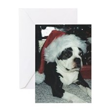BOSTON TERRIER SANTA Greeting Card