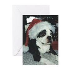 BOSTON TERRIER SANTA Greeting Cards (Pk of 20)