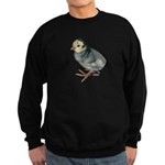 Turkey Poult Blue Slate Sweatshirt (dark)