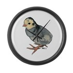 Turkey Poult Blue Slate Large Wall Clock