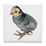 Turkey Poult Blue Slate Tile Coaster