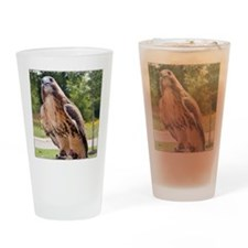 Red tail hawk (1) Drinking Glass