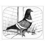 Starling Pigeon 1973 Small Poster