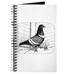 Starling Pigeon 1973 Journal