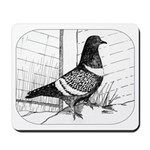 Starling Pigeon 1973 Mousepad