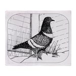 Starling Pigeon 1973 Throw Blanket
