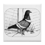 Starling Pigeon 1973 Tile Coaster