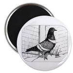 "Starling Pigeon 1973 2.25"" Magnet (10 pack)"