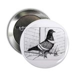 "Starling Pigeon 1973 2.25"" Button"