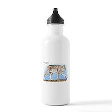 Canadian Lynx Sports Water Bottle