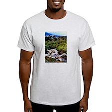 Bristlecone Pines- T-Shirt